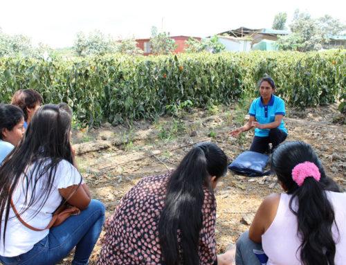 Microcréditos para mujeres socialmente responsables