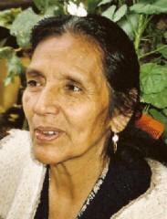 consejo de las trece abuelas indígenas, julieta casimiro