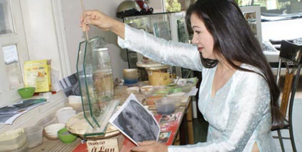 artista-vietnam-arena