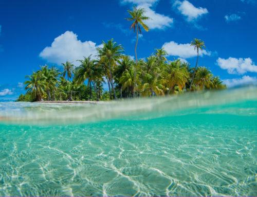 Vuelta al mundo: Última parada- entre mares de corales