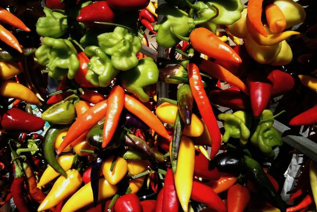 gastronomia mallorca mercados antiguos